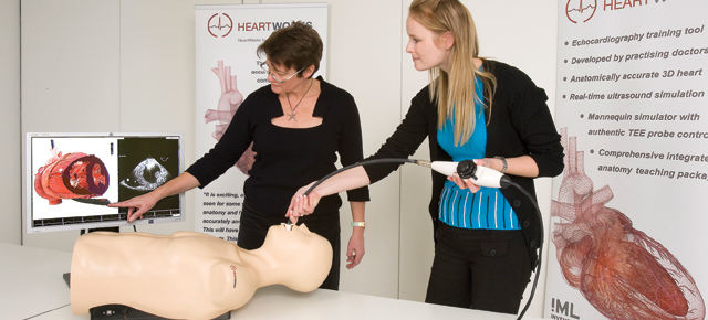 Clinicians-in-Training Explore the Human Heart